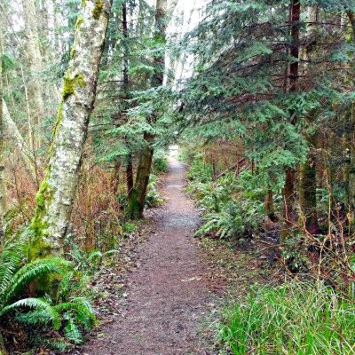 Whidbey_path_2